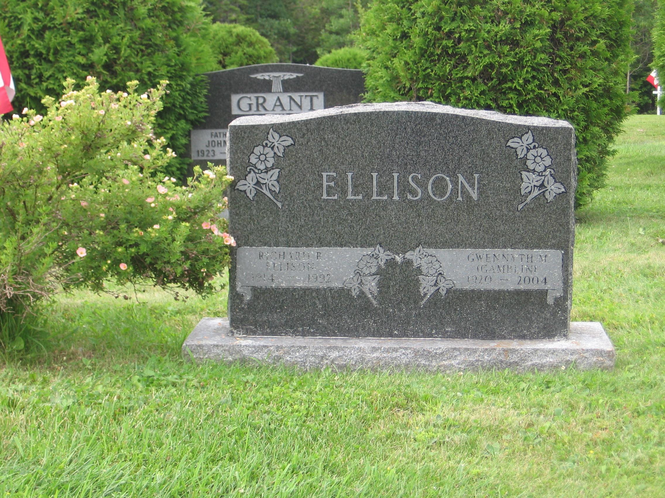 Headstones and Obituaries - McAdam